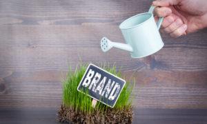 Kilka słów o budowaniu wizerunku marki – wywiad z PR Manager Grupy OLX