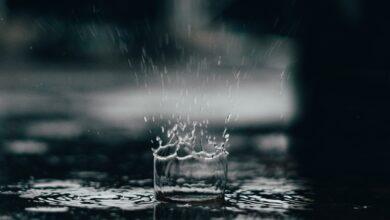Photo of Jak deweloperzy walczą z suszą w mieście?